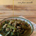 Cicoria otrantina con fave novelle ricetta tipica pugliese