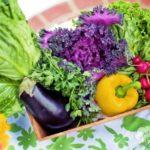 Cucina macrobiotica: scopriamone di più