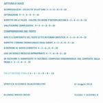 Verifiche: schede didattiche di italiano per tutte le classi della scuola primaria.