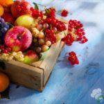 Spesa di agosto: 10 frutti di stagione