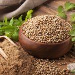 Coriandolo: come utilizzarlo nelle tue ricette