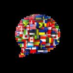 Dizionario online disponibile in 28 lingue